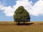 energie sparen stromkosten senken schritten, stromverbrauch info - tipps zum strom- und energiekosten sparen, Design ideen